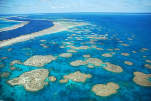 Aerial view of the reef and islands of the Whitsunday Islands, Queensland, Australia Credit: Chantal Ferraro/ Flickr RF/Getty Images